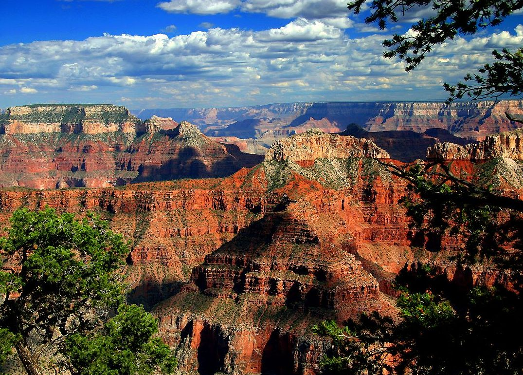 Grand Canyon Tour Info